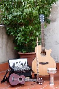 Sonall_guitarraacordioukelele